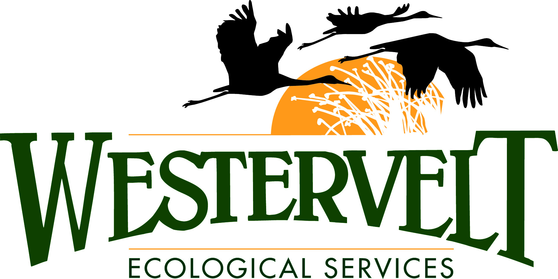 Westervelt Ecological Services