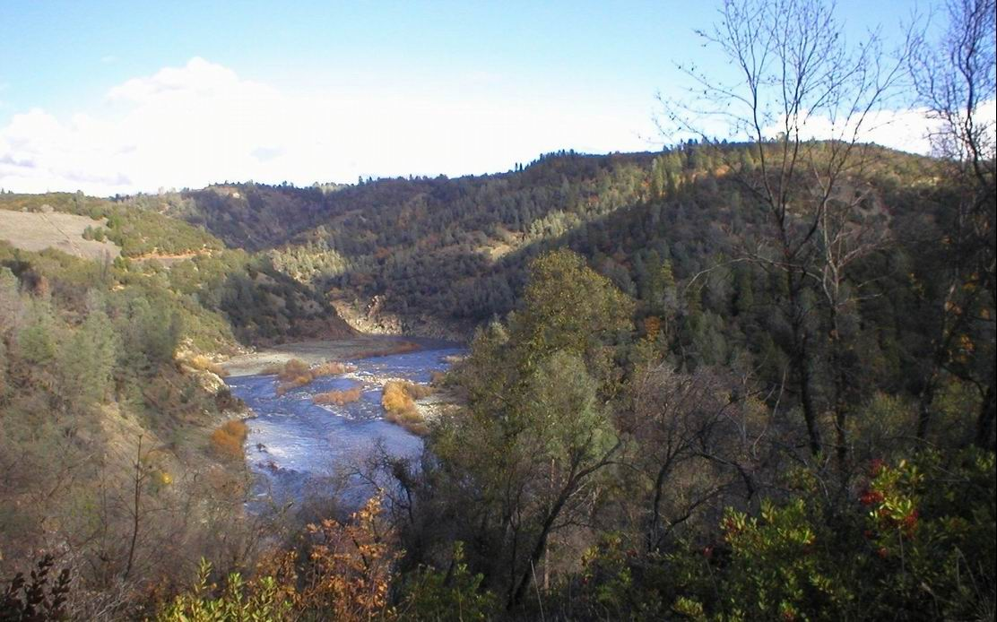 View of the American River from land preserved by Placer Land Trust in 2003. See pages 4 and 5 for a focused look at the Trust's efforts in the American River watershed.