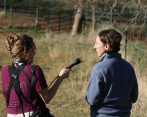 Capital Public Radio and National Public Radio help publicize the urgency of the Bruin Ranch project.