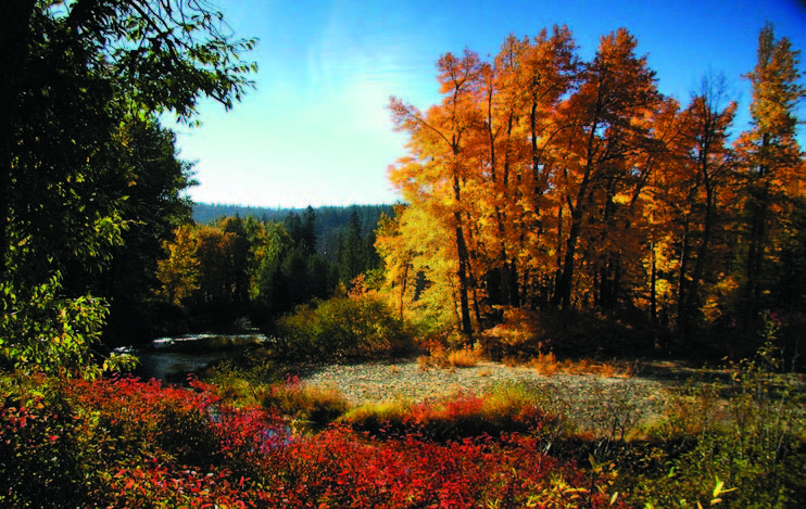 Cisco Grove Gould Park, a successful project of Placer Land Trust and Placer Legacy.