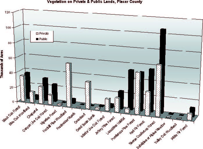 veg chart
