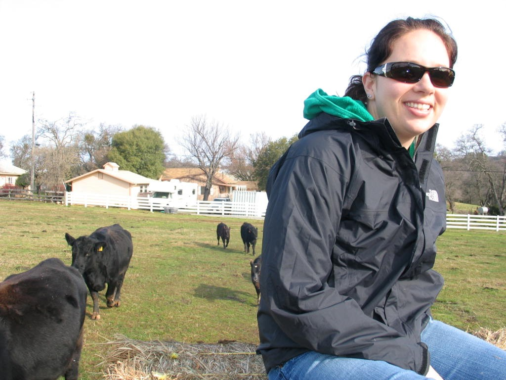 PLT's AmeriCorps intern Katy Sater makes her acquaintance with some of Placer County's bovine residents.