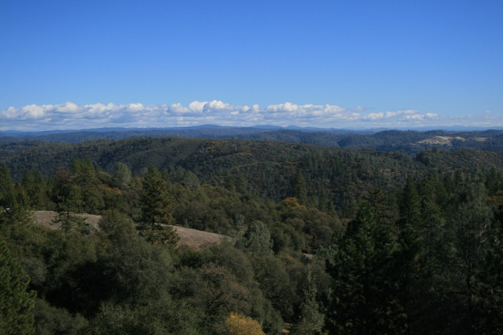 Canyon View Preserve