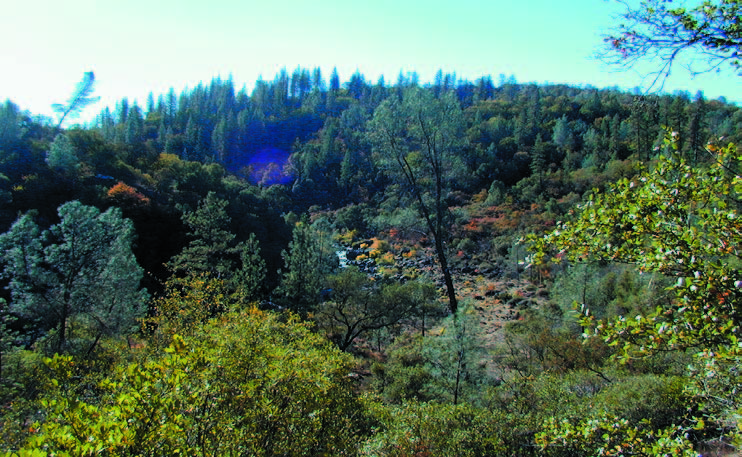 """Preservation of the Shutamul Bear River Preserve will protect oak woodlands, water quality, and one of the few remaining """"wild"""" areas in Placer County's foothills."""