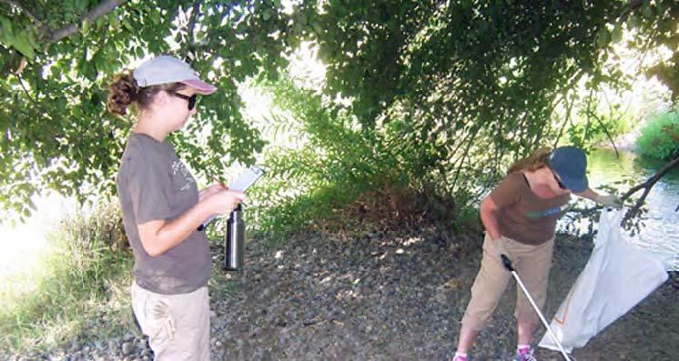 Volunteers at PLT's 2012 Great Sierra River Cleanup, picking up trash at Miner's Ravine in Roseville.
