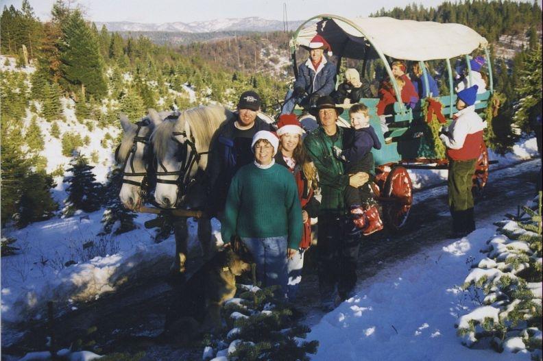 snowy peaks wagon ride